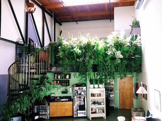 green wall 3