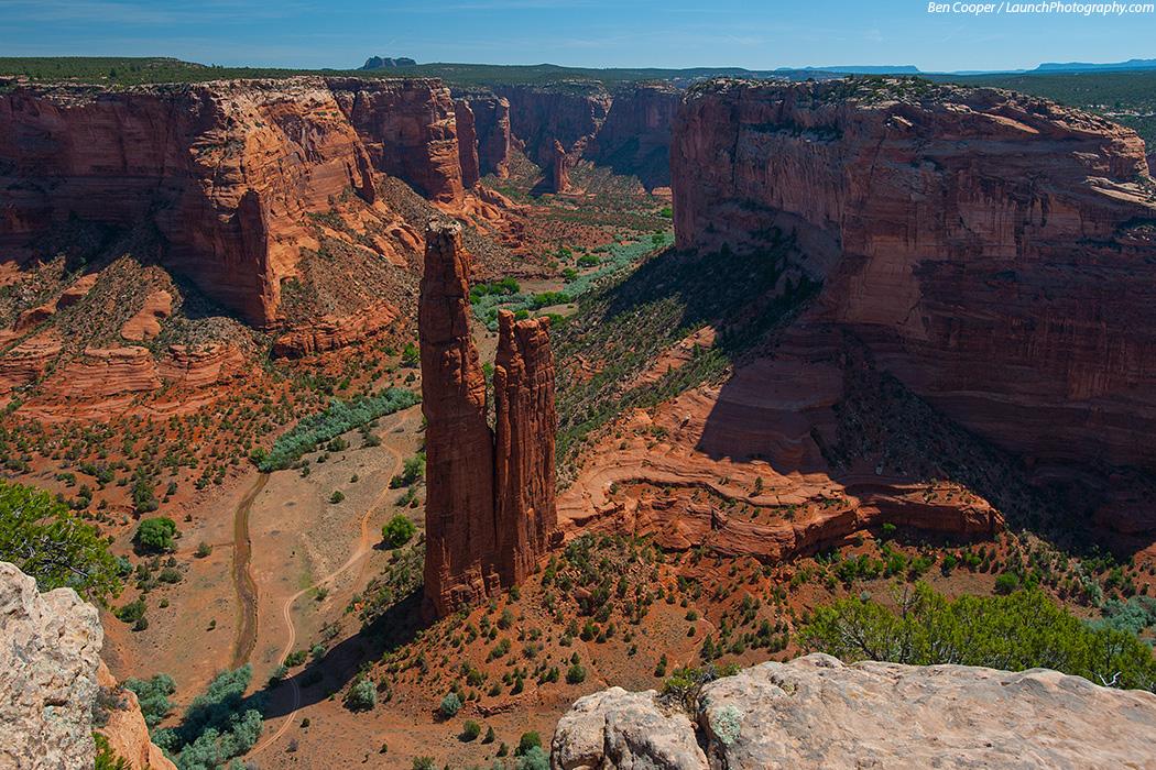 Canyon_de_Chelly_Spider_3